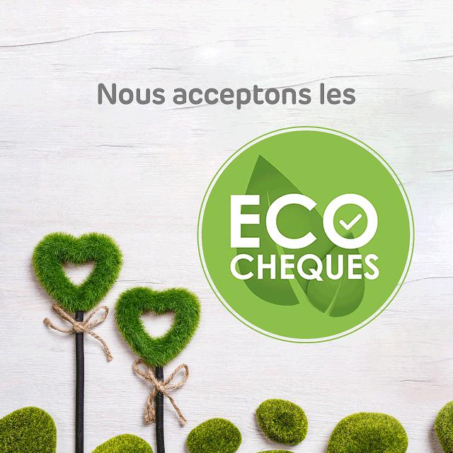 Brico Eco Cheque