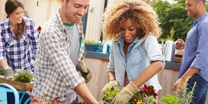 Tuinontwerp: 9 stappen voor een levendige tuin met bloemen