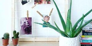 Fabriquez votre propre cadre photo
