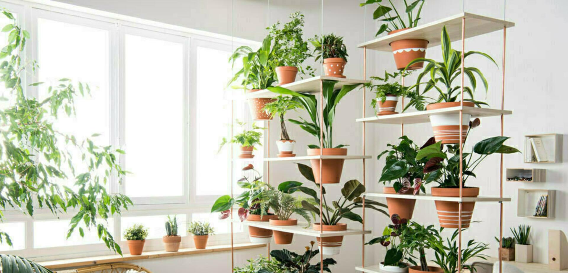 Plante Sur Les Murs mur végétal - pour les makers