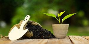 Aankoopadvies: meststoffen