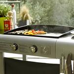 Choisir un BBQ au gaz ou au charbon ?