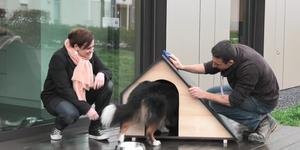 Conseil-bricolage: Niche pour chien design