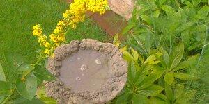 Maak een vogelbadje uit beton