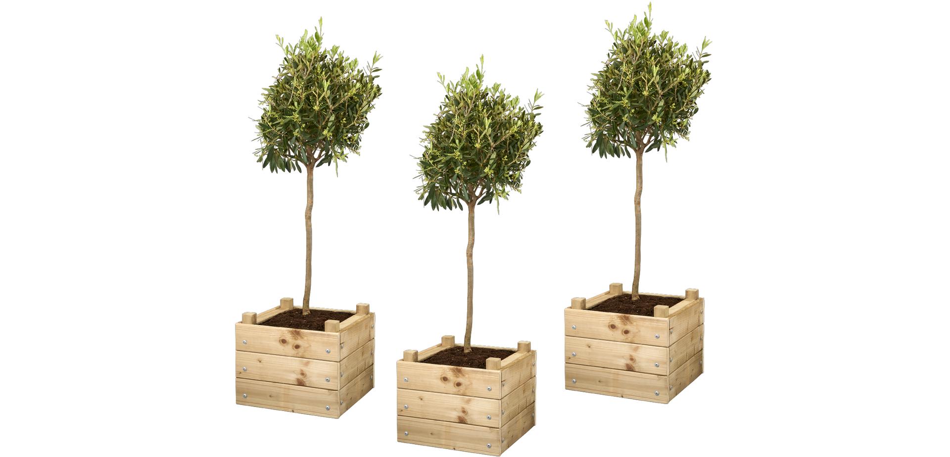 Super Maak je eigen vierkante plantenbak - Brico   Voor de makers CE-24