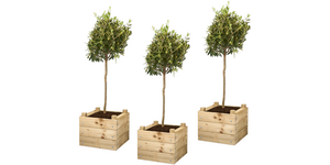 Maak je eigen vierkante plantenbak