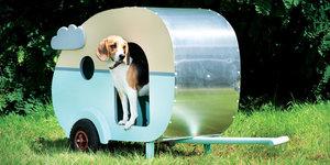 Een hondenhok voor Max? Zo gefikst!