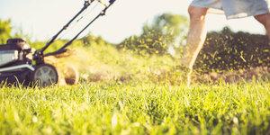 Hoe kies je de juiste elektrische grasmaaier?