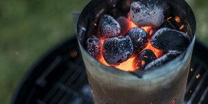 Aide à la décision: Comment choisir le bon charbon pour son barbecue ?