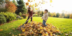 Maak jouw tuin winterklaar met het juiste tuingereedschap