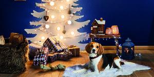 Maak je eigen kerstboom!